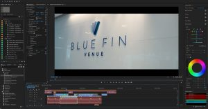 Blue Fin Venue London